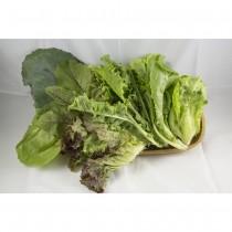 【大福農場】有機葛森綠汁菜