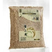 【粗味】無毒安心胚芽米